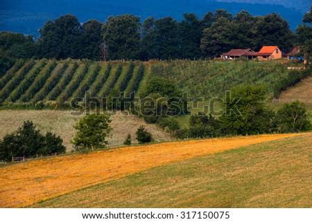 Rural European landscape - stock photo