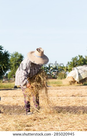 Rural farmer with haystack prepare for agriculture - stock photo
