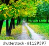 rural footpath in the forest - stock photo
