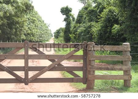 Rural gate of wood on brazilian farm, northwest of Parana State. - stock photo
