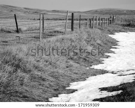 Rural grasslands, Colorado, United States, black and white version - stock photo