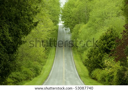 Rural Highway through lush forest - stock photo