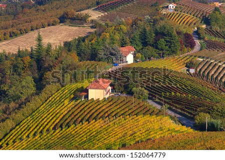 Rural house among autumnal vineyards on the hills of Langhe in Piedmont, Northern Italy (view from above). - stock photo