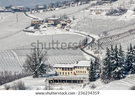Rural house and narrow road among vineyards covered with snow in Piedmont, Northern Italy. - stock photo
