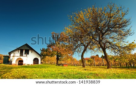 Rural house in autumn - stock photo
