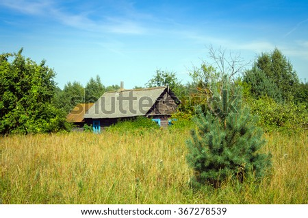 Rural house surrounded by trees in sunny summer day - stock photo