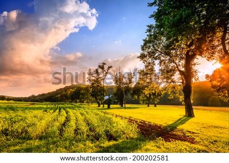 Rural Kentucky sunset - stock photo