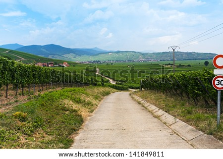 rural landscape and view of small town Ribeauville on Alsace Wine Route, France - stock photo