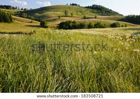 rural landscape at evening, Serbia - stock photo