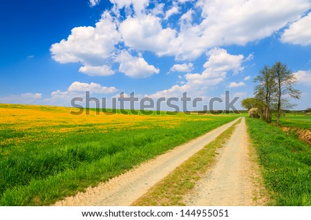 Rural landscape country road yellow flowers field white clouds blue sky, Hamerlberg, Burgenland, Austria - stock photo