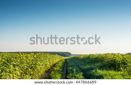 rural landscape, countryside views - stock photo