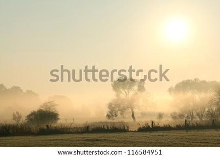 Rural landscape in a misty October morning. - stock photo