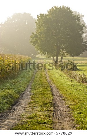 Rural landscape in autumn - stock photo