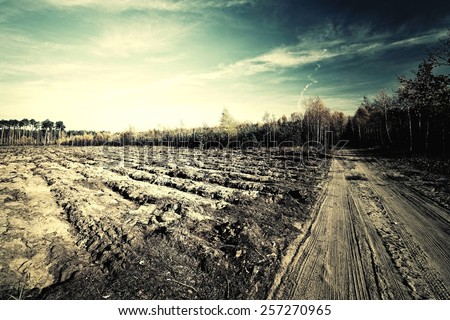 Rural landscape in dramatic lighting. Vintage style. - stock photo