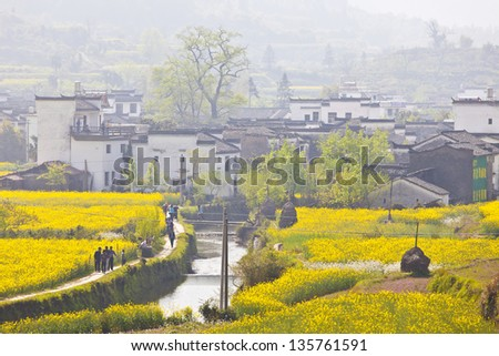 Rural landscape in Wuyuan, China with many rape flowers. - stock photo