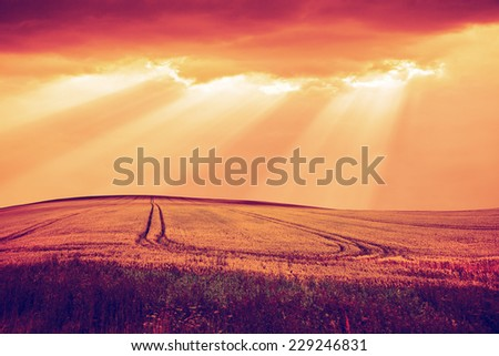 Rural landscape of field and clouds. Vintage retro style. - stock photo