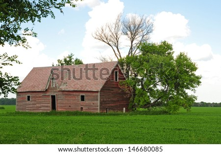 Rural landscape: old red farm shed in green field