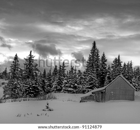 Rural landscape on a stormy winter day in black and white.