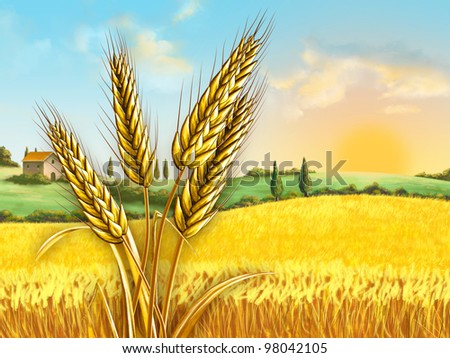 Rural landscape showing a wheat field on a sunny day. Some wheat heads on foreground. Digital illustration. - stock photo