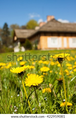 Rural landscape.Traditional wooden house and green flower field
