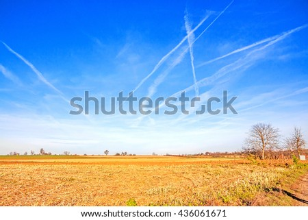rural landscape - vibrant field, blue sky with clouds  - stock photo