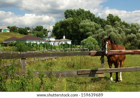 Rural landscape with a horse in Bykovo, Russia