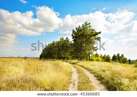 Rural landscape with a meadow, road, a grove and the  blue sky with white clouds. Ukraine