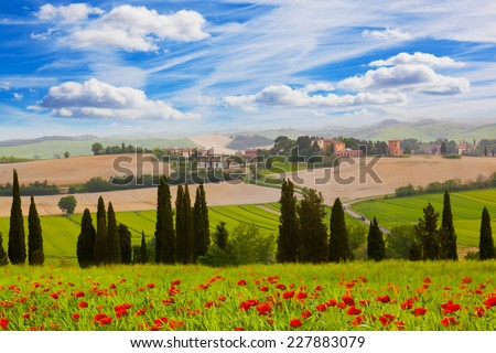 Rural landscape with blossoming poppies, Tuscany, Italy - stock photo