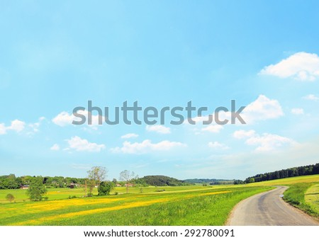 rural landscape with buttercups, blue sky background with clouds and copy space - stock photo