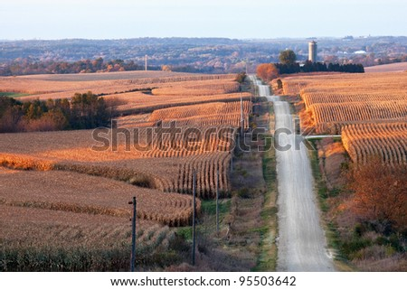Rural landscape with corn fields, rolling hills, and a gravel road (horizontal)