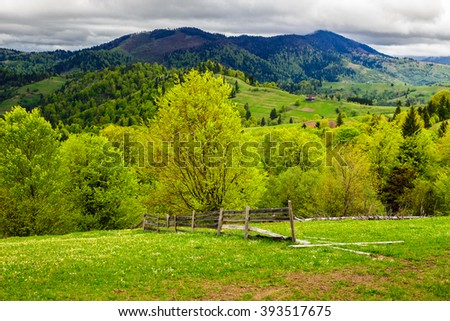 rural landscape with fence near the meadow and forest on the hillside - stock photo