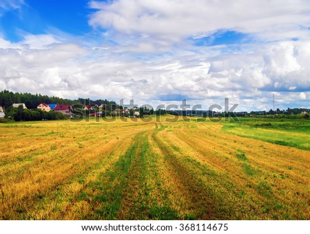 Rural landscape with field of cut grass and bright blue sky with cumulus clouds. Bright sunny day. - stock photo