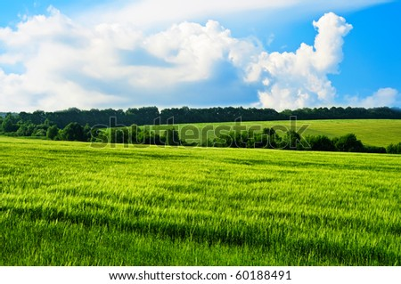 Rural landscape with green hills and blue sky - stock photo