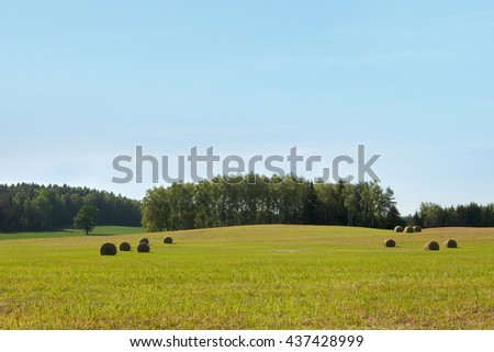 Rural landscape with hay bales on stubble field, plenty sunlight - stock photo