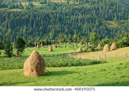 rural landscape with haystacks in Apuseni Mountains, Romania - stock photo