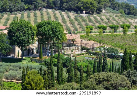 Rural landscape with old farmhouse and olive garden. Provence, France.
