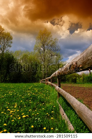rural landscape wooden fence and trees blooming dandelions, spring - stock photo