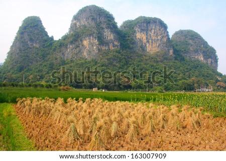Rural landscape. Yangshuo county. China. - stock photo