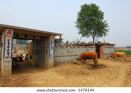 Rural life in China - stock photo