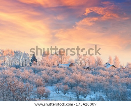 Rural lodges in a winter garden covered with hoarfrost at sunset. - stock photo