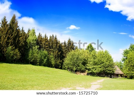 rural log-house in the forest - stock photo