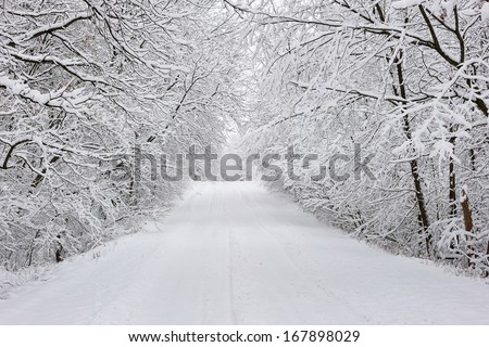 Rural Michigan countryside road after a snow storm - stock photo
