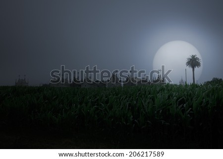 Rural misty landscape seeing corn field and cemetery skyline (added some digital noise) - stock photo