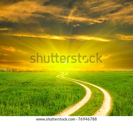 Rural path across green field - stock photo