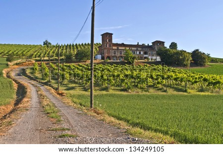 Rural pathway to a winery, Langhe, Piedmont, Italy