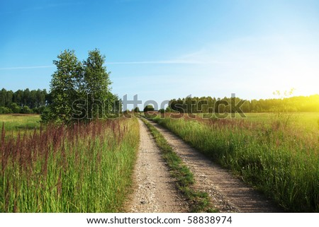 Rural road and sun. - stock photo