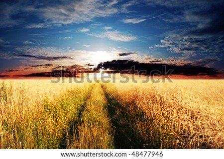 Rural road and sunset. - stock photo