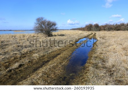 rural road at early spring time - stock photo
