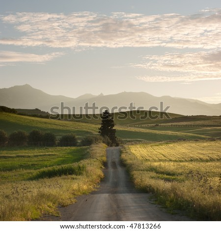 rural road crosses yellows fields with solitary tree at the twilight, in background layered hills of the outback of Sicily - stock photo