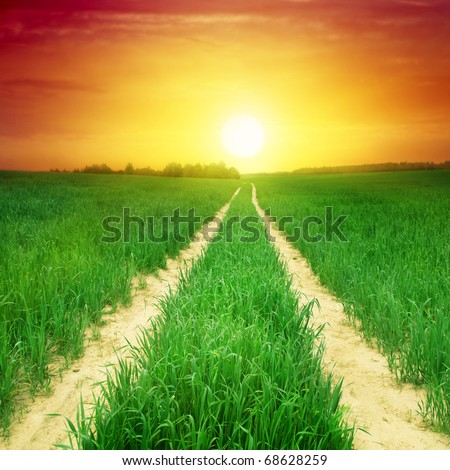 Rural road,green field and sunset. - stock photo